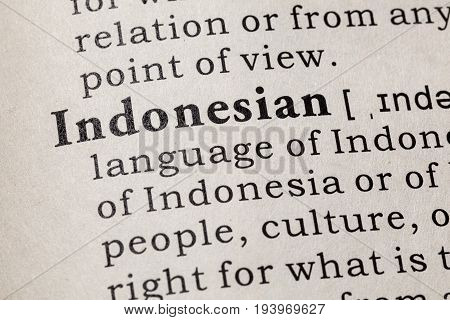 Fake Dictionary Dictionary definition of the word Indonesian. including key descriptive words.