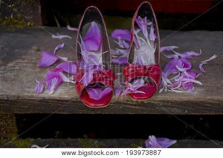 Red high heels on the wooden stairs scattered with wedding petals, outdoor closeup photo
