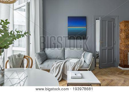 Scandinavian Style, Gray Living Room