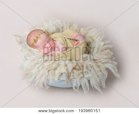 swaddled kid napping on yellowish furry pillow