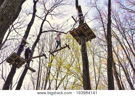 People climbing the obstacles in the trees for recreation