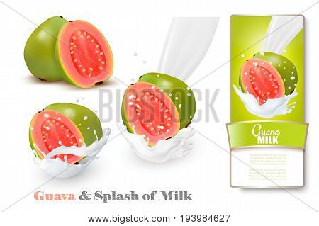 Fresh guava in milk splashes. Vector illustration