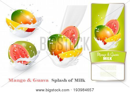 Mango and guava in milk splashes. Vector.