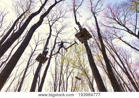 People climbing the obstacles in the trees for recreation in