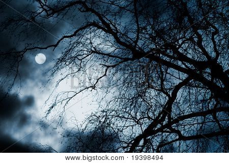 Scary dark scenery with naked trees, full moon and clouds poster