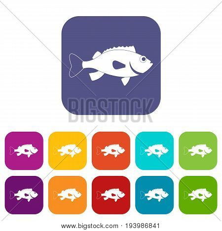 Sea bass fish icons set vector illustration in flat style In colors red, blue, green and other