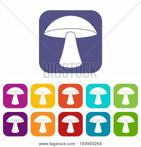 Birch mushroom icons set vector illustration in flat style In colors red, blue, green and other