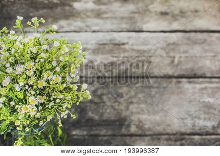 Bouquet of field chamomiles on the background of a wooden surface