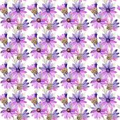 Wildflower immortelle flower pattern in a watercolor style. Full name of the plant: immortelle. Aquarelle wild flower for background, texture, wrapper pattern, frame or border. poster