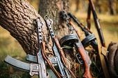 Soviet Russian Military Ammunition Weapon Of World War II. PPS-43 And PPSh-41 Submachine Gun Leaning Against Trunk Of Tree. Weapon Of Red Army. poster