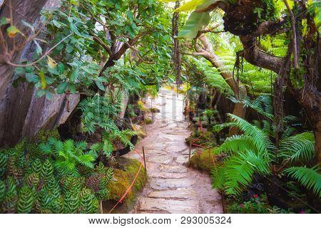 Natural Garden Style Decoration Like Heaven.green Garden.