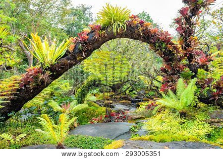 Natural Garden Style Decoration Like Heaven.green Nature.