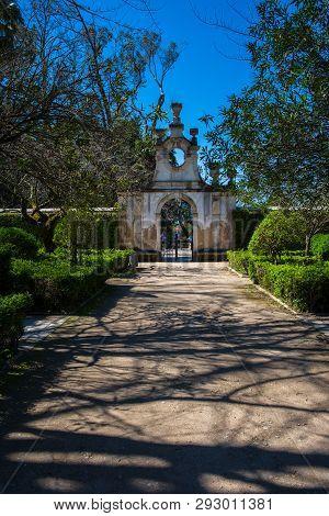 Botanic Garden Of The Coimbra University In Portugal