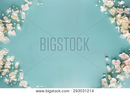 Beautiful And Peaceful Spring Flower Blossoms Against A Blue Background. Image Shot From Top View.