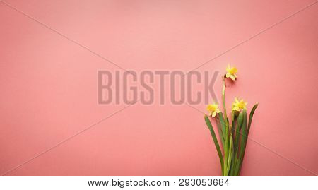 Pastel Easter Eggs And White Flower Blossoms Over A Teal Blue Background With Room For Copy Space. I