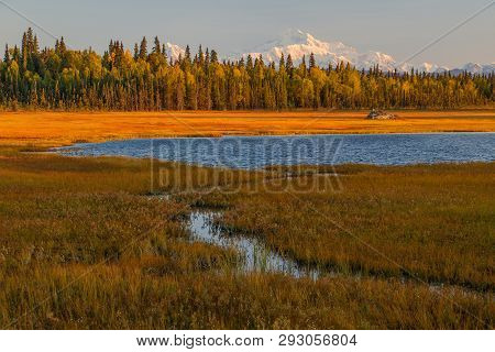 View Of Mt. Denali From Remote Viewpoint On Petersville Road, Alaska