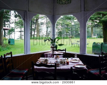 A garden view seen from inside a