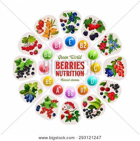 Vitamins In Berries, Nutrition Benefits Of Strawberry, Cherry And Blueberry, Raspberry, Currant And