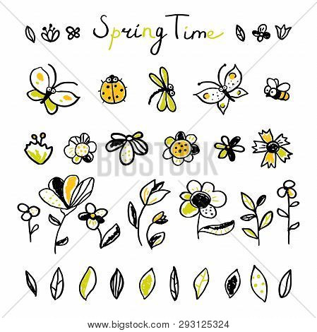 Set Hand Drawn Floral, Leaves And Insects Elements. Spring Collection. Cute Collection Of Design Ele