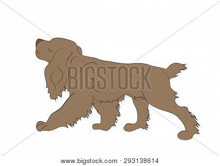 Dog Running Color, Vector, White Background, Vector