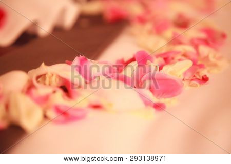 Romantic Hotel Bedroom Interior Decoration, Fresh Pink And White Rose Flower Petals Sprinkled On Bed