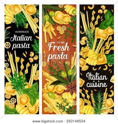 Pasta With Spice Herbs And Olives, Italian Cuisine Vector Menu. Spaghetti, Macaroni And Fettuccini,