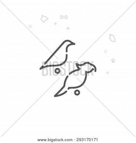 Parrot And Canary Vector Line Icon. Pet Supplies Symbol, Pictogram, Sign. Light Abstract Geometric B