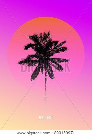 Silhouette Coconut Vector Photo Free Trial Bigstock