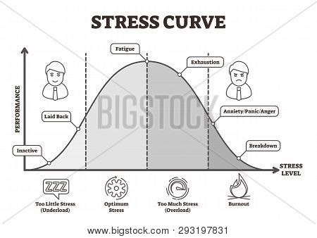 Stress Curve Vector Illustration. Flat Bw Labeled Performance Level Graphic. Healthy Performance Ana