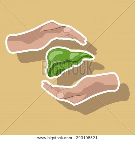 Paper Sticker On Theme World Hepatitis Day . Liver In Hands