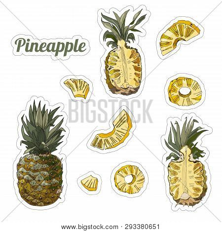 Color Set  With Stickers Of Pineapple. Whole And Sliced Elements Isolated On White Background. Hand
