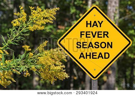 Hay Fever Season Ahead Caution Sign With Flower Background