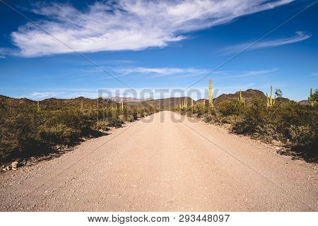 Ajo Mountain Drive, An Unpaved Road Through Organ Pipe Cactus National Monument In Arizona