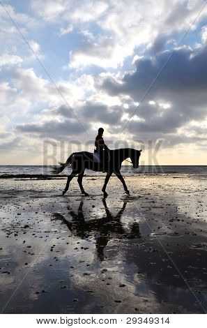 Silhouette of Female Horse Rider Walking on the Sandy Beach with Reflection of the Sky poster