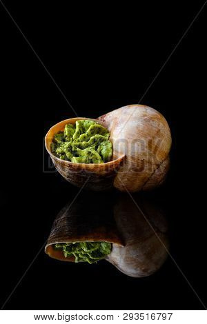 French And Italian Cuisine. Baked Snails. Free Space. Large Escargots De Bourgogne Snails On Black B