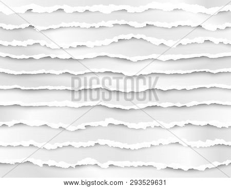 Set Of Torn Paper Stripes. Abstract Paper Texture With Damaged Edge. Vector Illustration Isolated On