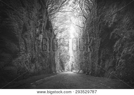 Mirador Pico del Ingles path in Anaga rural park, monochrome
