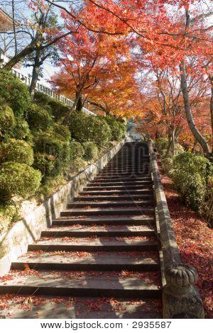 Autumn Kiyomizu Temple