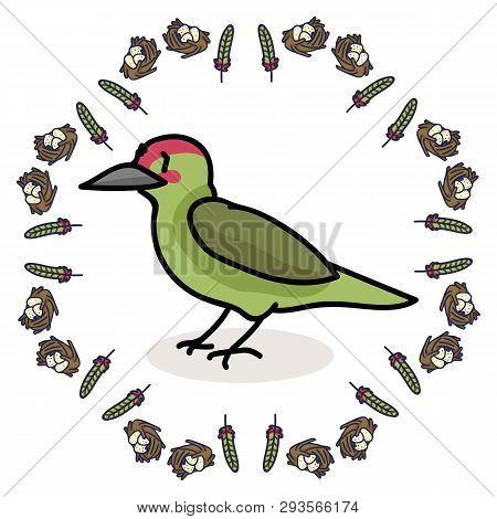 Cute Woodpecker And Feathers Cartoon Vector Illustration Motif Set.