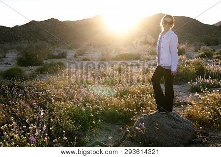 Woman Standing On A Rock In A Wildflower Field At Dusk In Joshua Tree National Park California. Sunf