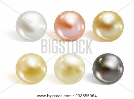 Realistic Different Colors Pearls Set. Round Colored Nacre Formed Within The Shell Of A Pearl Oyster
