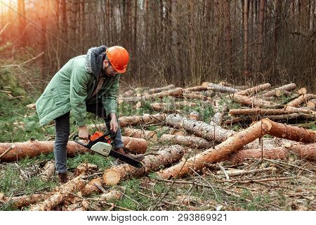 Logging, Worker In A Protective Suit With A Chainsaw Sawing Wood. Cutting Down Trees, Forest Destruc