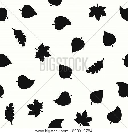 Leaf Vector Pattern On White Background For Natural Product Store, Garden, Nature Cosmetics, Ecology