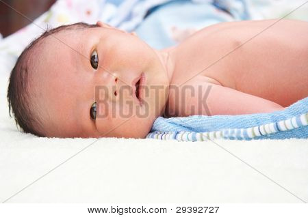 portrait of newborn baby