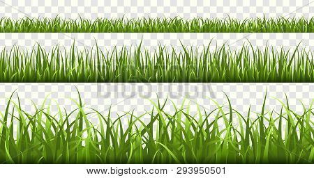 Green Grass Borders. Football Field, Summer Meadow Green Nature, Panorama Herbs Spring Macro Element
