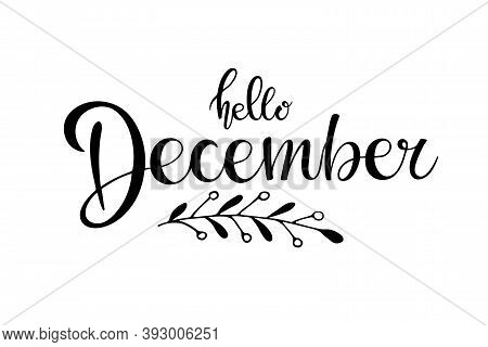 Hello December Lettering With Winter Branch. Black And White Hand Drawn Illustration. Christmas Cele