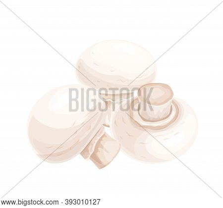 Composition Of Appetizing Fresh Mushrooms, Vector Illustration. Heap Of Raw Organic Fungus With Legs