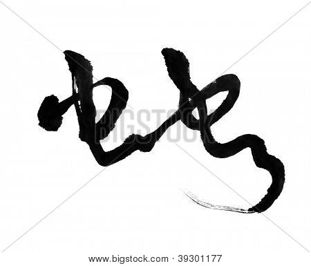 Chinese calligraphy mean snake poster