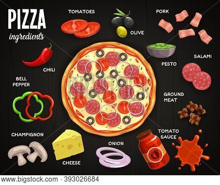 Pizzeria Menu, Pizza Ingredients Vector Tomatoes, Olive And Pork, Salami, Pesto And Ground Meat With