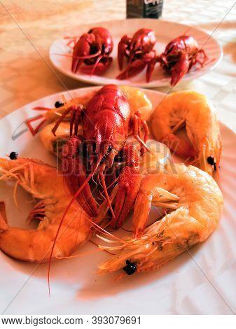 Fine Selection Of Crustacean For Dinner. Lobster, Crab And Jumbo Shrimp On Dark Background